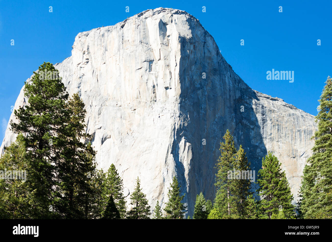 Yosemite National Park, California, the white El capitan mountain - Stock Image