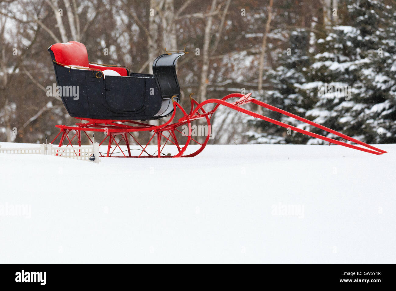 Antique horse-drawn sleigh on a snowy December day. Stock Photo