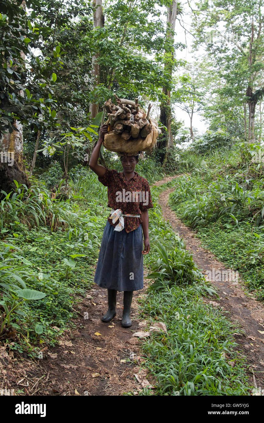 Woman carrying firewood. São Tomé e Príncipe - Stock Image