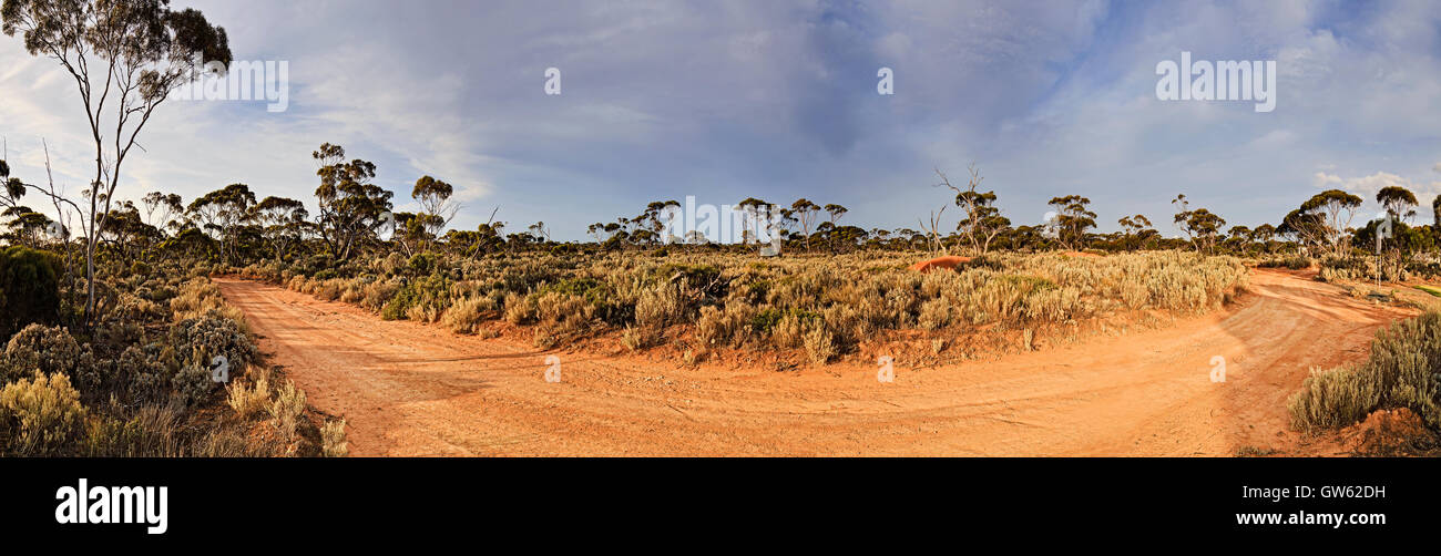 Panorama of unsealed outback road in Western Australia bushland near Balladonia roadhouse. - Stock Image