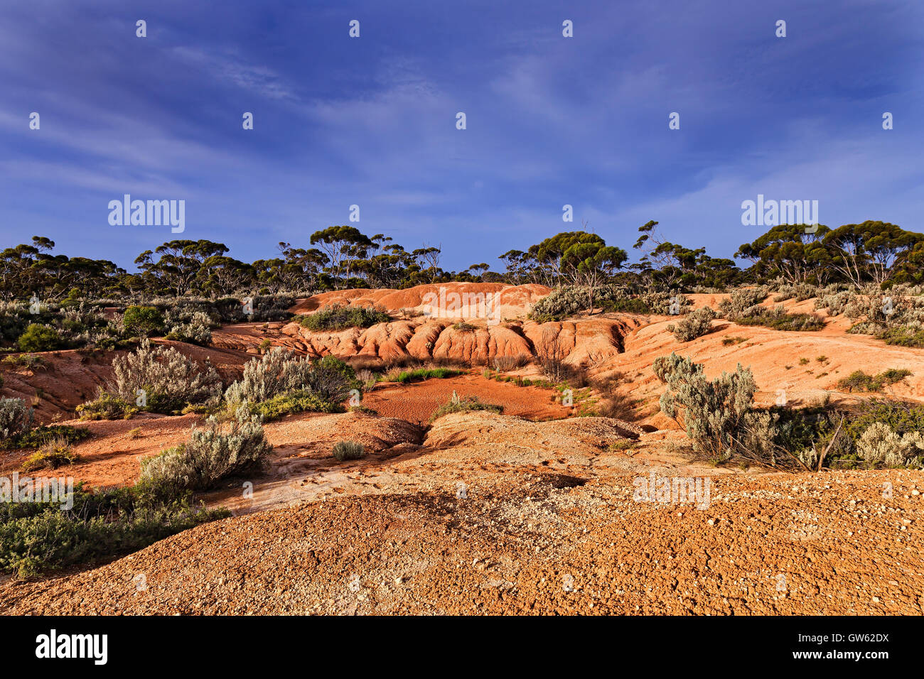 Dry waterless billabong in arid climate of remote outback in Western Australia near Balladonia roadhouse before - Stock Image