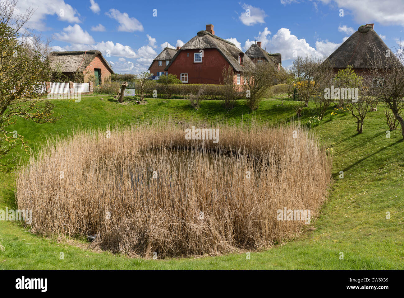 The Fething, a fresh water reservoir, on the tiny islet of Langeness in the mud flats, North Sea, Schleswig-Holstein, - Stock Image