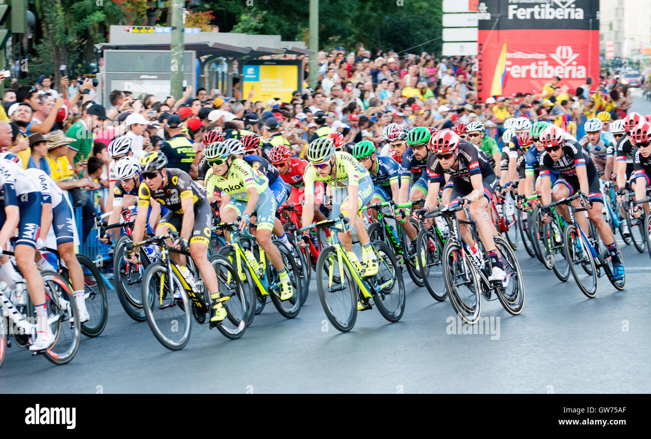 Madrid, Spain. 11th September, 2016. Peloton rides during the 21st stage of cycling race 'La Vuelta a España' (Tour Stock Photo
