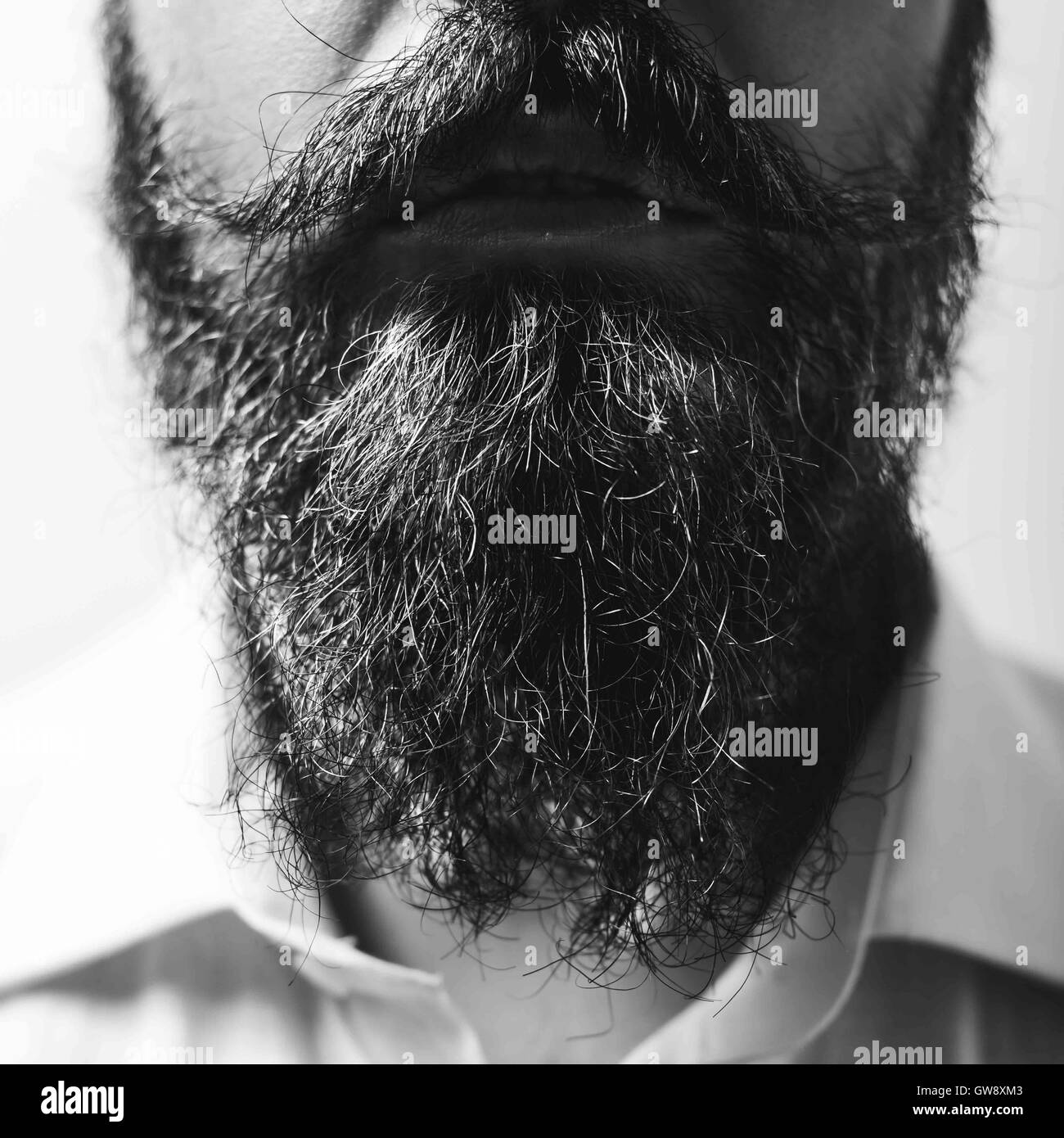 Close up of long beard and mustache - Stock Image