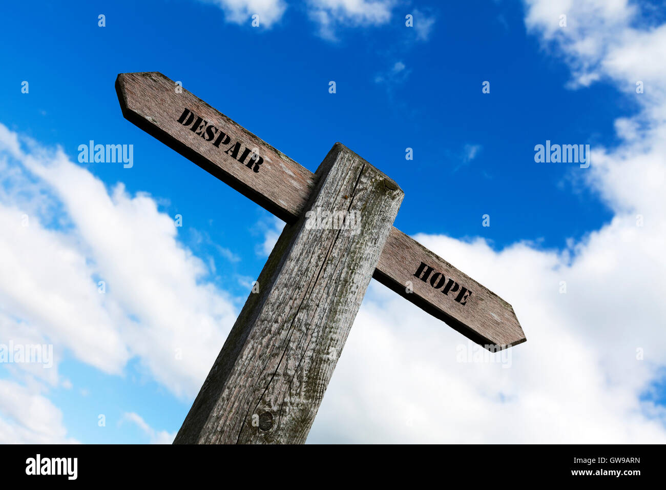 Despair hope grief depression sign words direction directions choice option options choose way in life antonyms - Stock Image