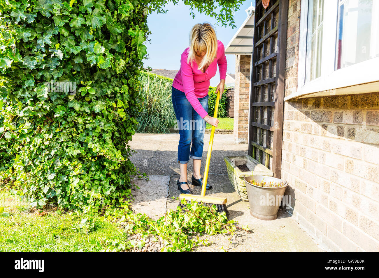sweeping up mess broom brushing sweep gardening gardener hedge cuttings UK England GB Stock Photo