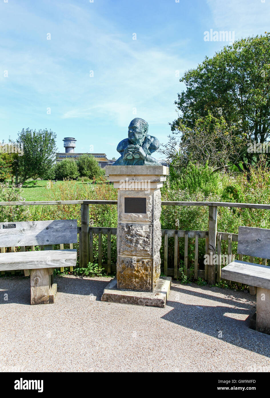 A bust of founder Sir Peter Scott by Jacqueline Shackleton on display  at the Slimbridge Wetland Centre Gloustershire Stock Photo
