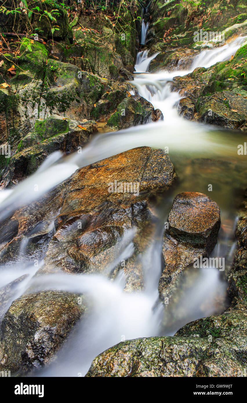 The streams of the Tekala Forest Reserve, Semenyih, Malaysia. - Stock Image