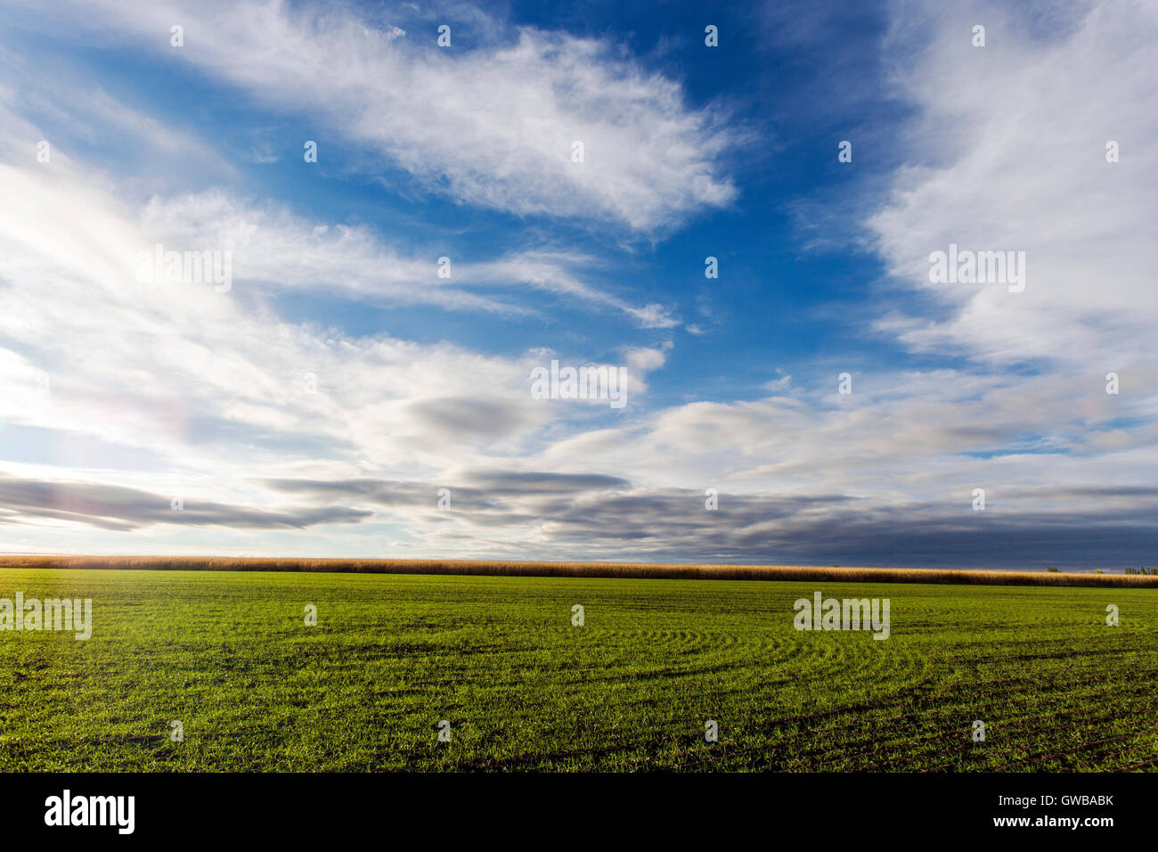 Farm fields and open sky with clouds in eastern Colorado; USA - Stock Image
