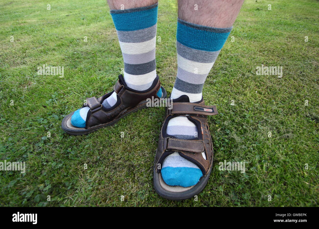 An English man wears socks with sandals during summer in a domestic garden setting, England UK MODEL RELEASED - Stock Image