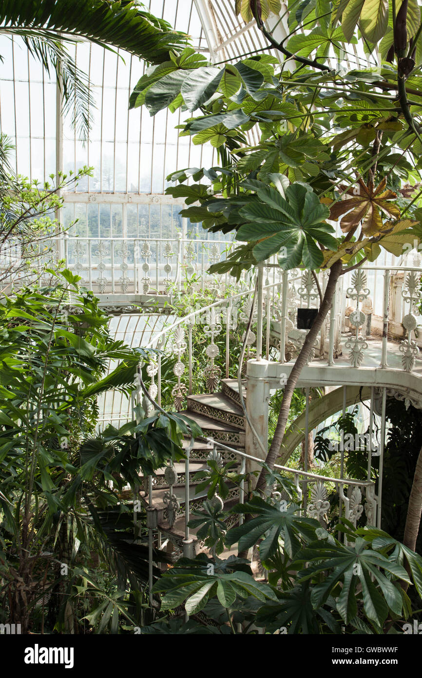 Spiral Staircase Inside The Palm House In Kew Royal