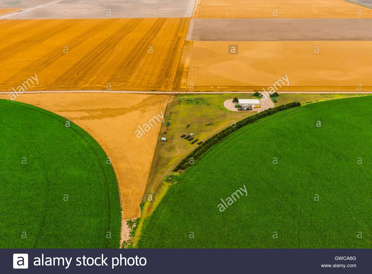 Aerial view of corn and wheat fields, Goodland, Kansas USA. - Stock Image