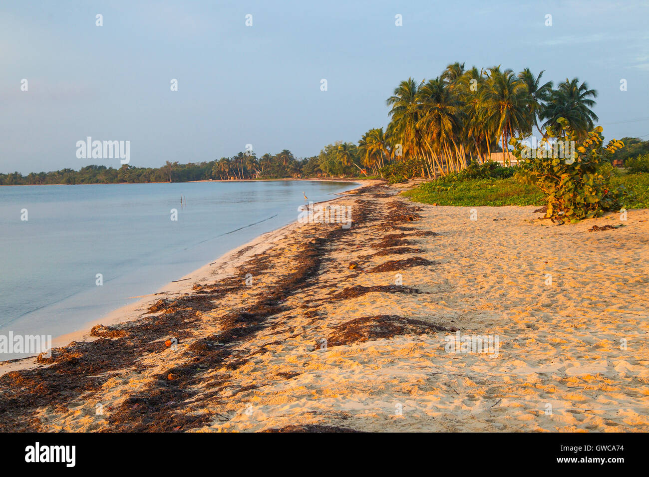 view of the Bay of PIgs or Bahia de Cochinos, Cuba, site of the failed invasion - Stock Image