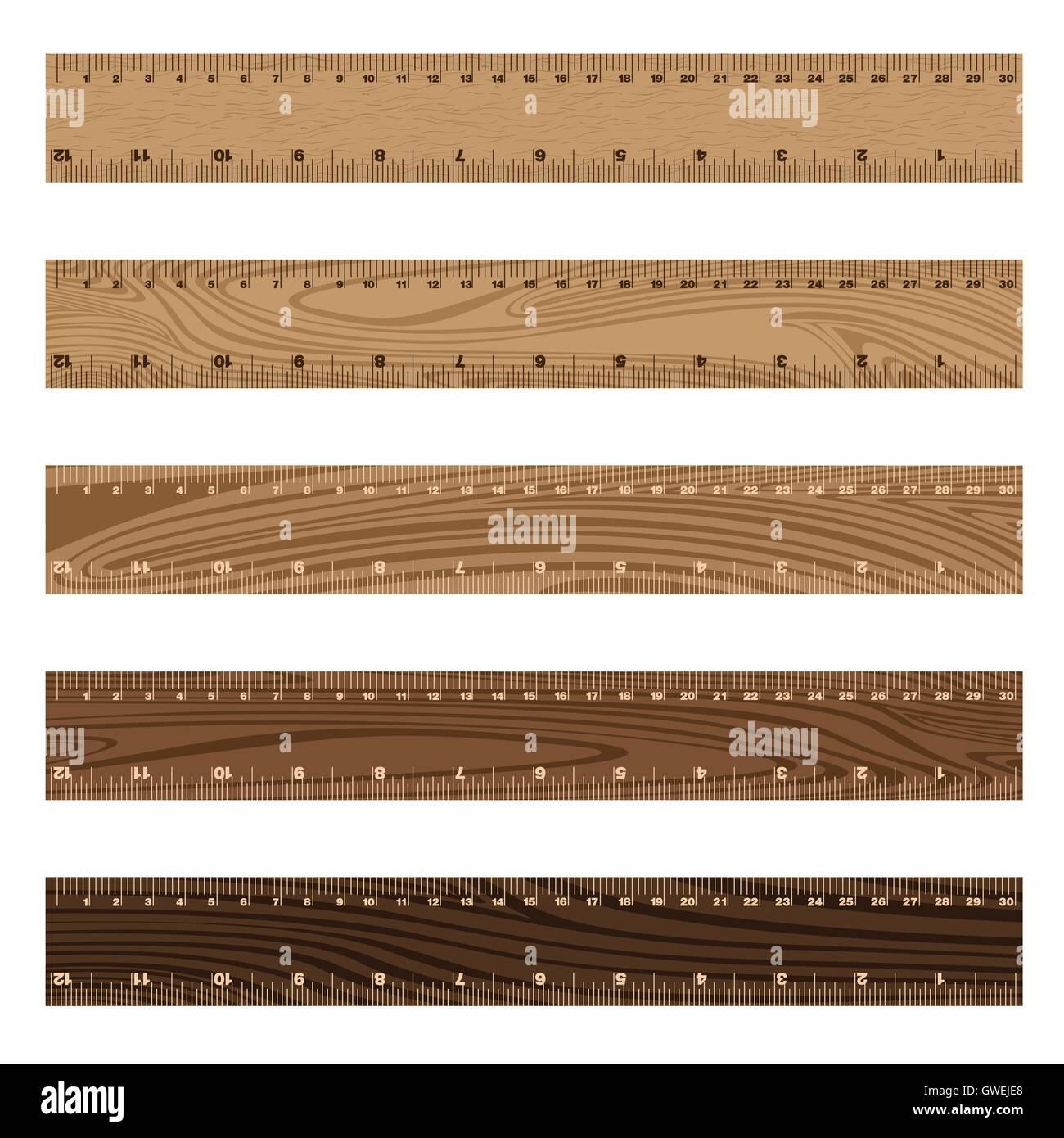ruler, vector, color, illustration, set, white, office, design, background, art, colorful, wood, object, school, - Stock Image