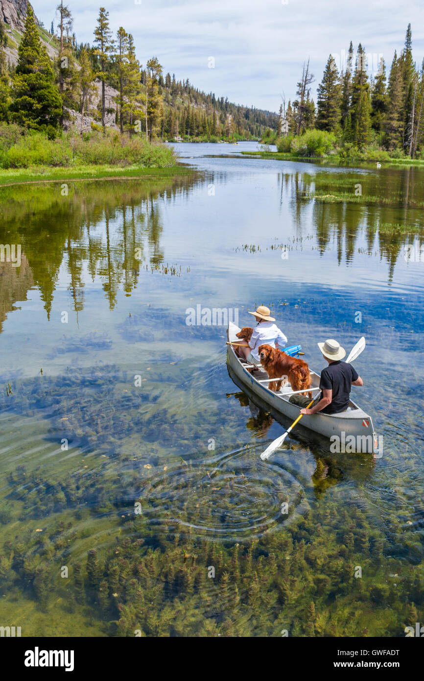 Couple with dogs in canoe at Twin Lakes in Mammoth Lakes Basin - Stock Image