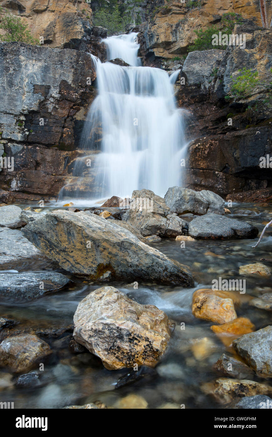 Tangle Falls on the Icefield Parkway, Jasper National Park, Alberta, Canada - Stock Image