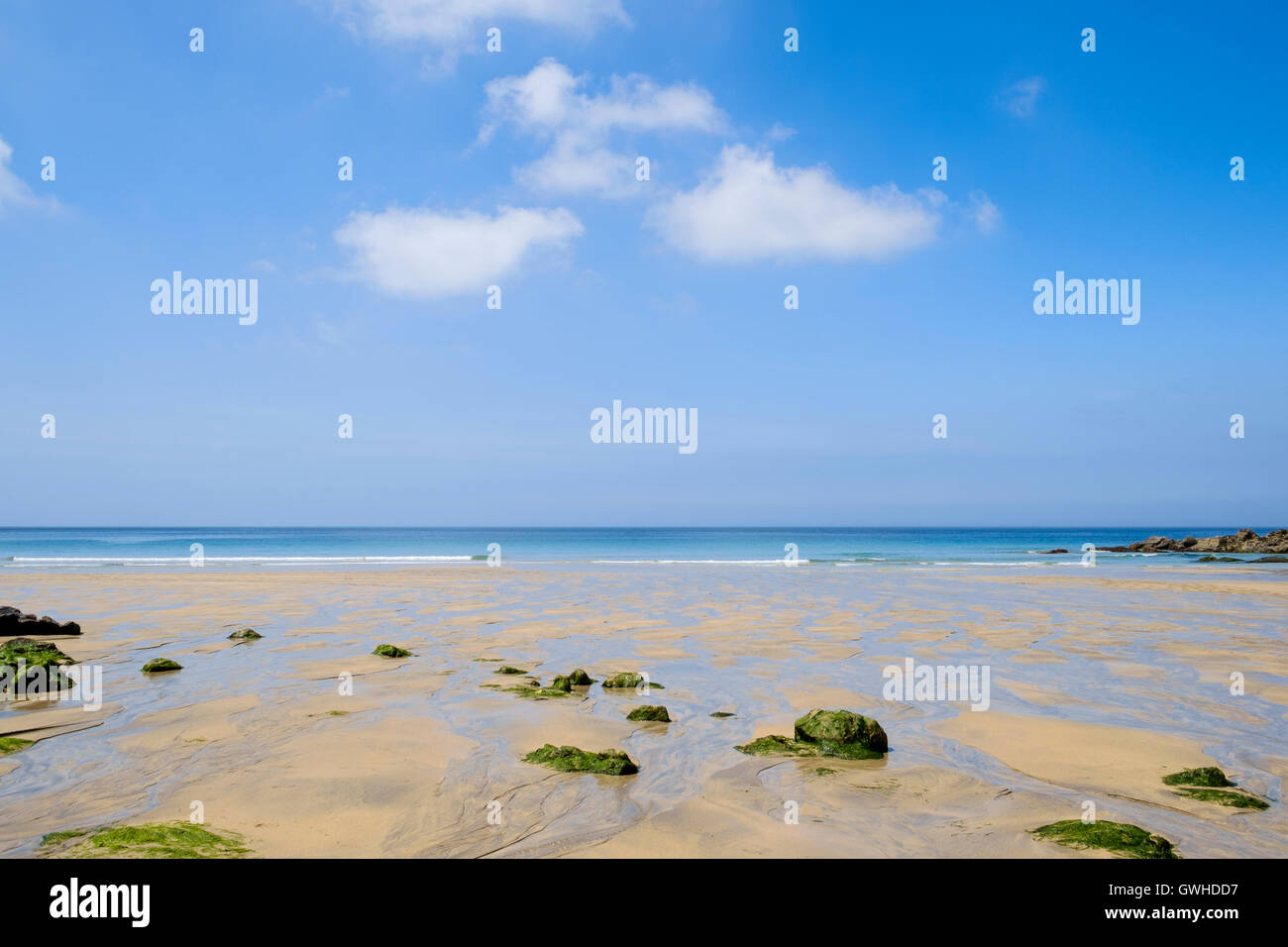 Sandy empty beach UK with rocks and seaweed - Cornwall, England, UK in summer - Stock Image