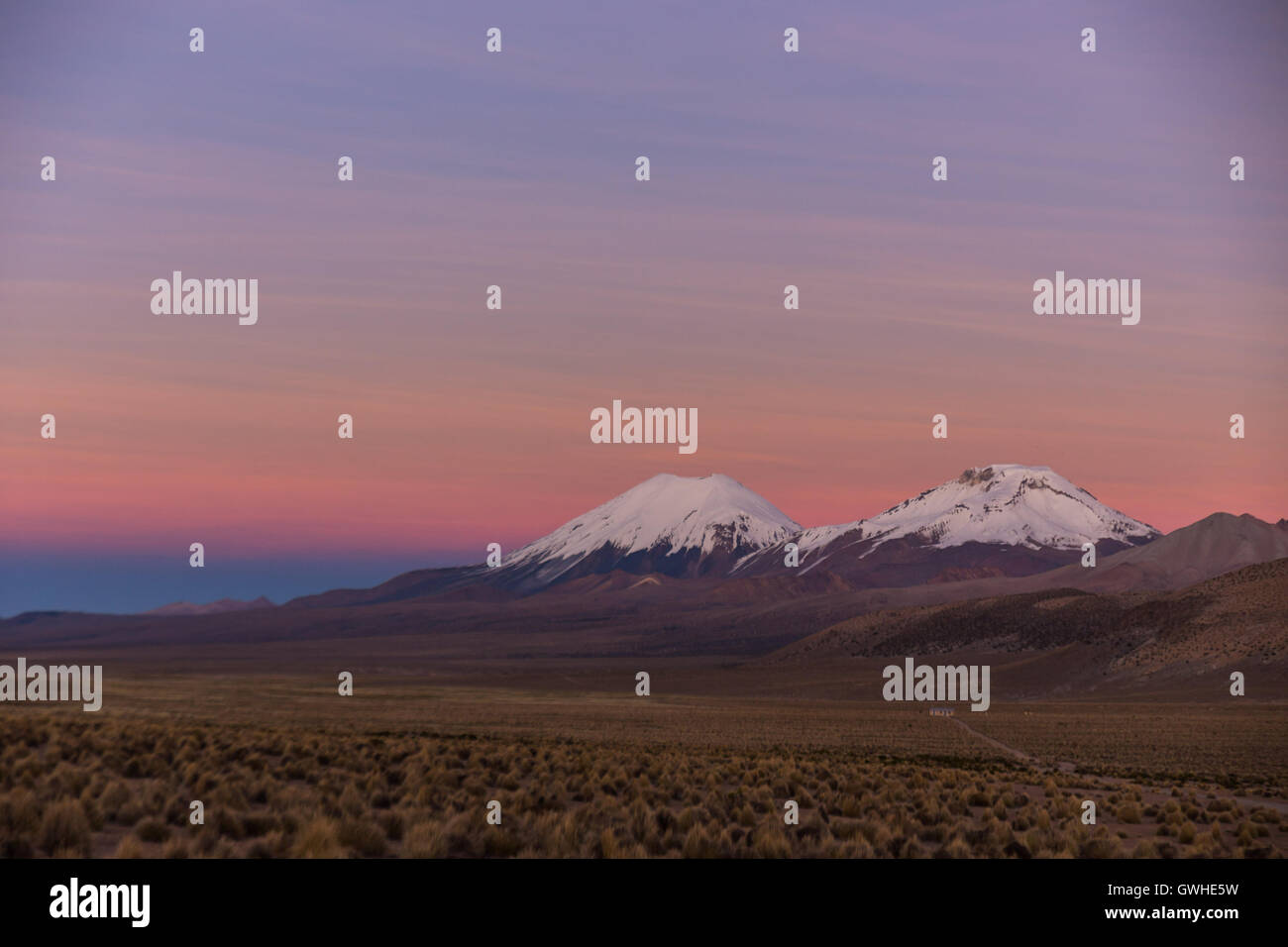 Sunset in Andes. Parinacota and Pomerade volcanos. High Andean landscape in the Andes. High Andean tundra landscape in the mount Stock Photo