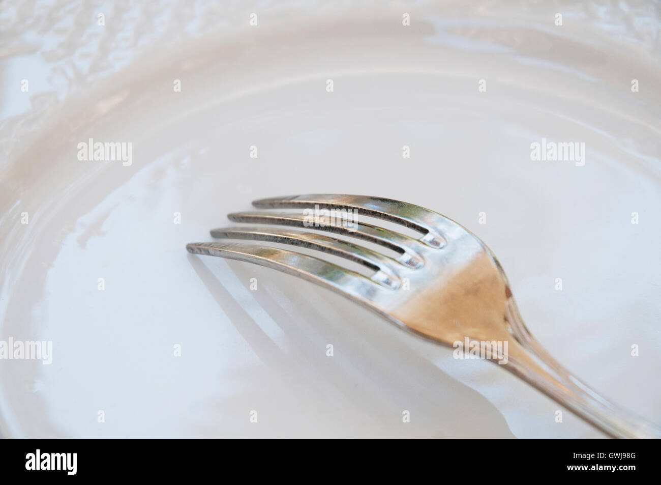 Fork on empty dish. Close view. Stock Photo