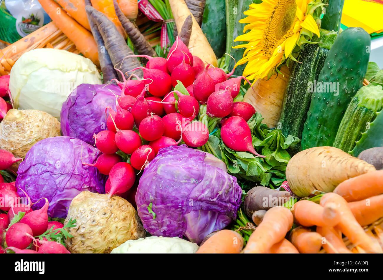 pink radish variety vegetables vegan background - Stock Image