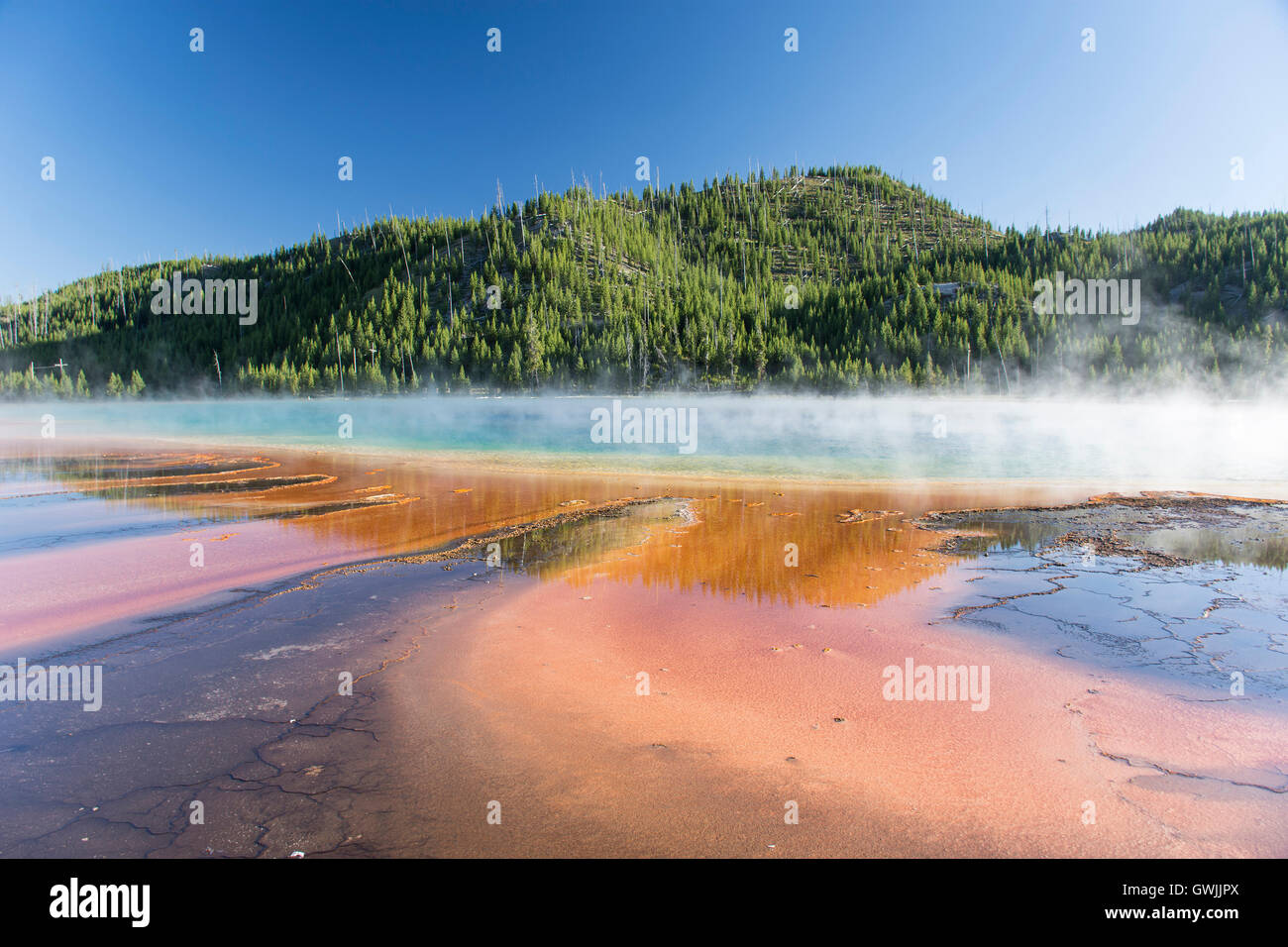 Grand Prismatic Spring in Midway Geyser Basin, with steam and reflections. Yellowstone National Park, Wyoming, United - Stock Image
