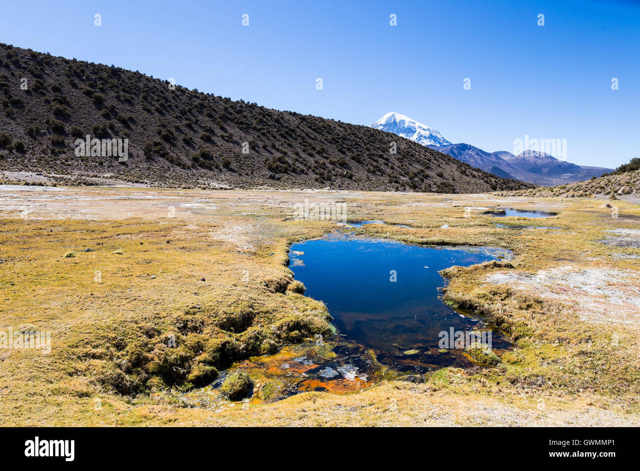 Andean geysers. Junthuma geysers, formed by geothermal activity. Bolivia. The thermal pools allow a healthy and - Stock Image