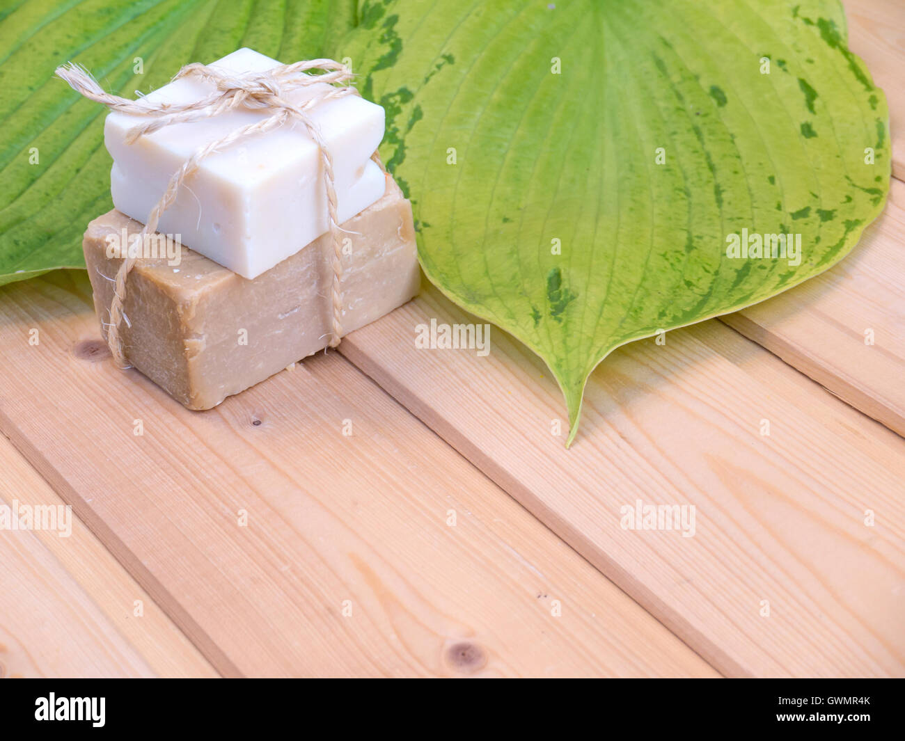 Homemade organic soap tied with jute rope and two green hosta leaves with veins on the wooden planks - Stock Image