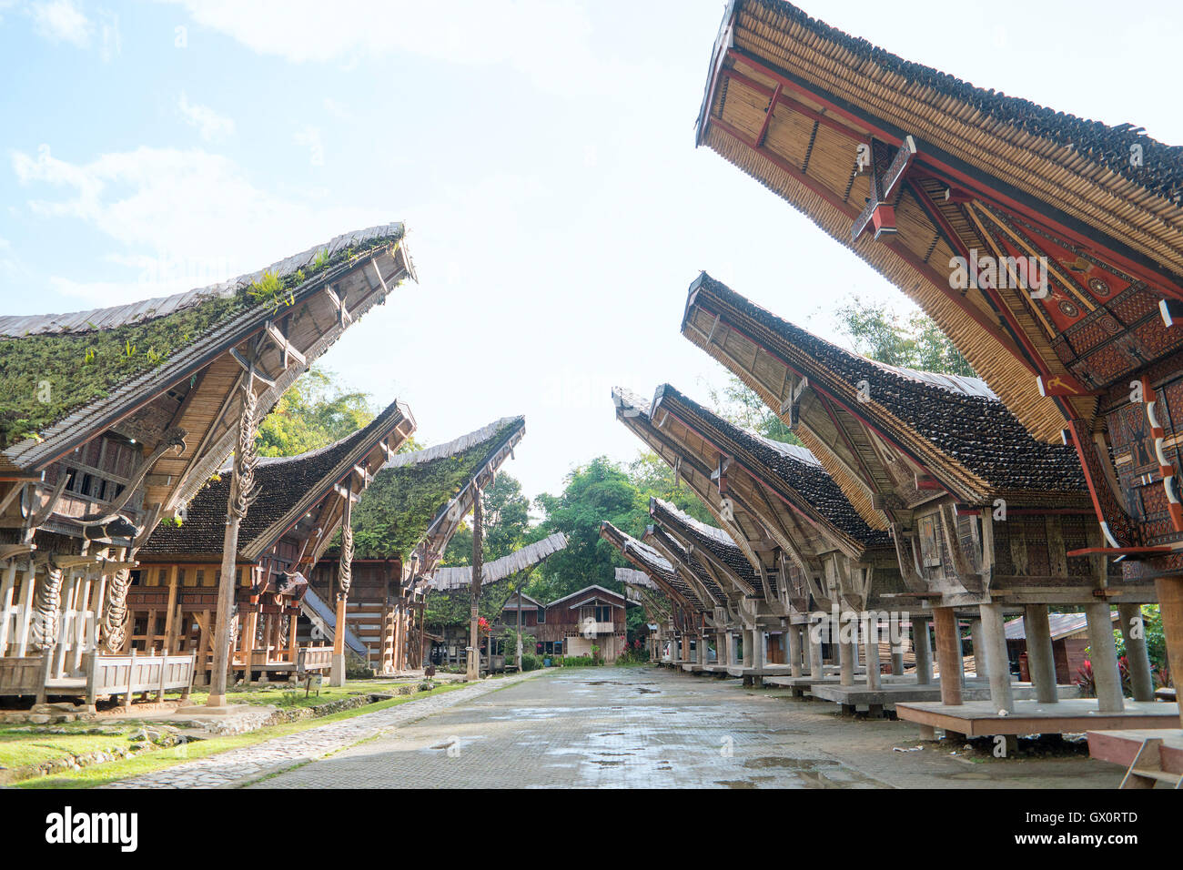 Tongkonan houses, traditional Torajan buildings and house located at Ke'Te Kesu - Stock Image