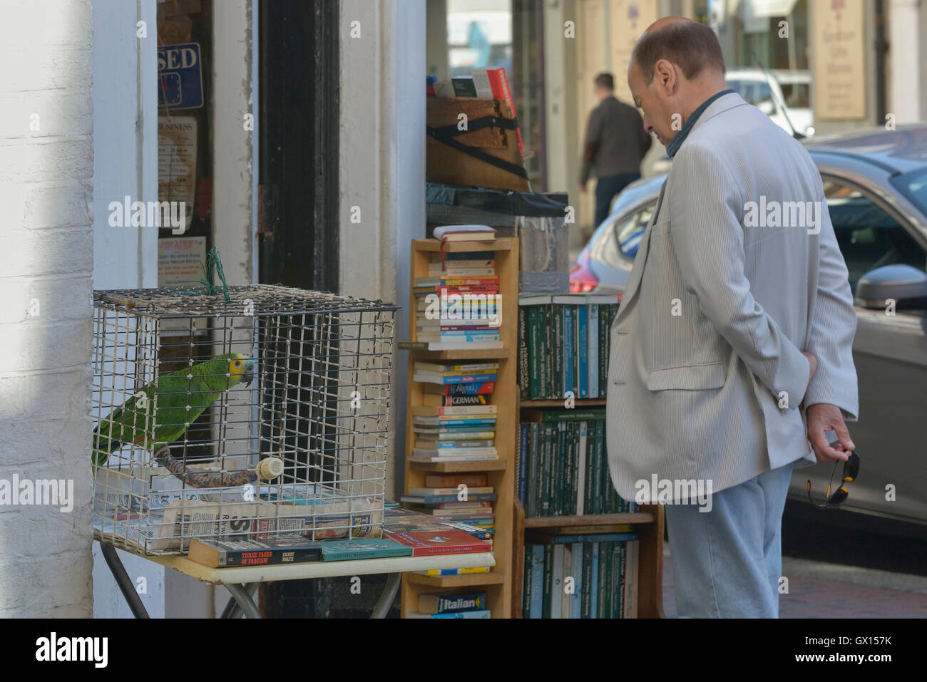 Camilla's secondhand bookshop with a pet parrot outside. Eastbourne. East Sussex. England. UK - Stock Image
