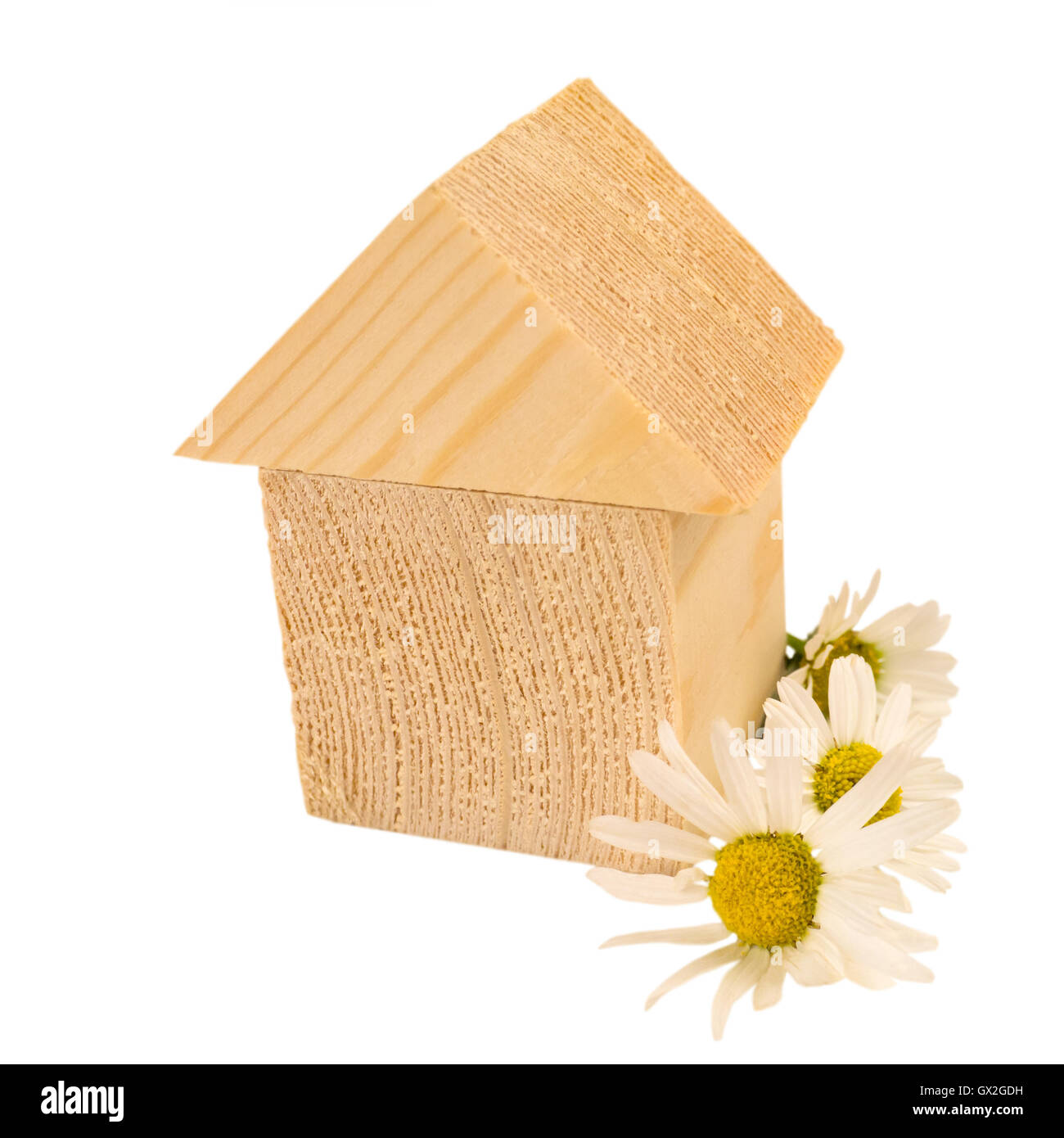 House of wooden building blocks with chamomile flowers isolated on white - Stock Image