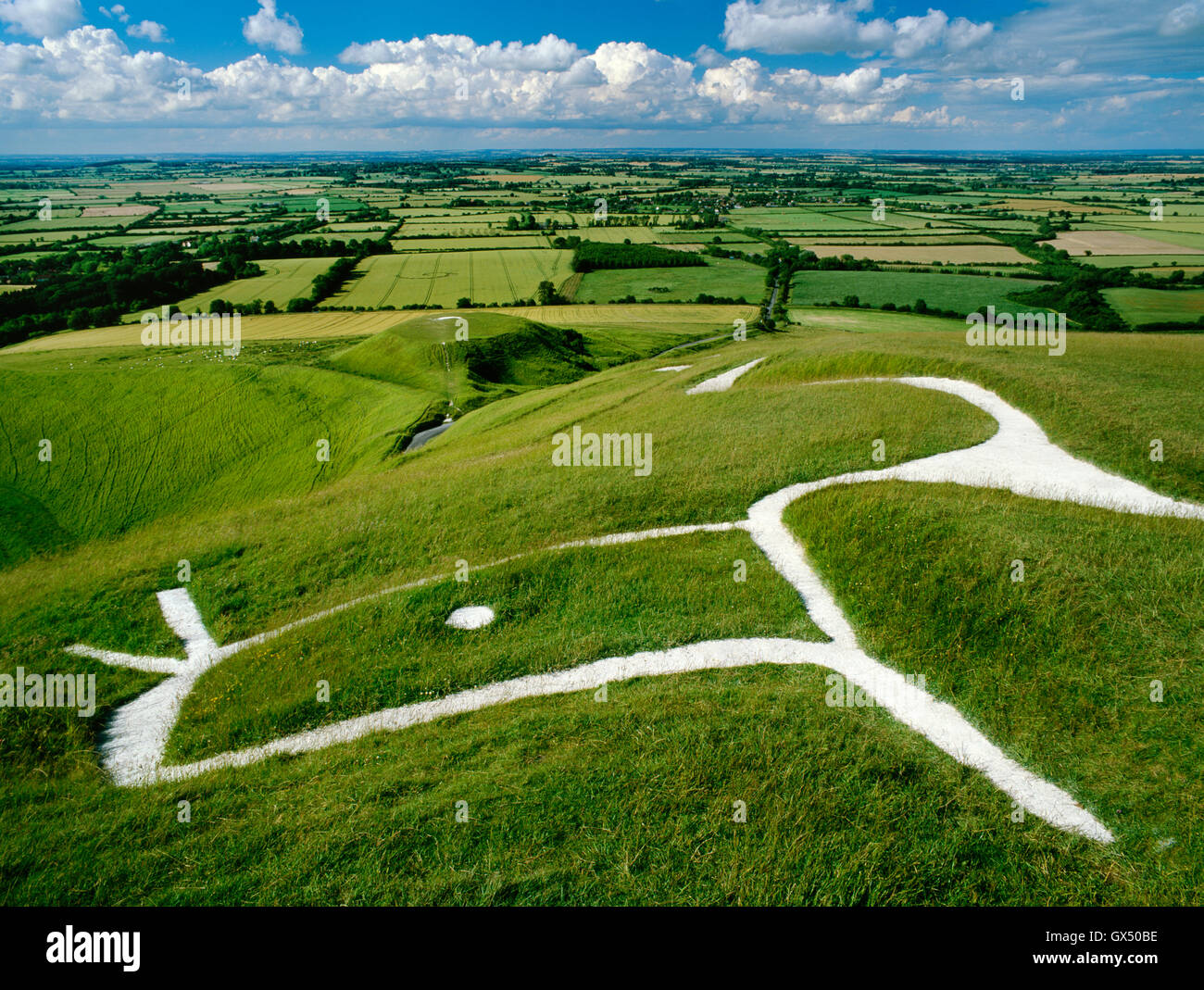 Head & eye of dragon-like Uffington White Horse chalk figure carved on the hillside above the flat-topped mound - Stock Image