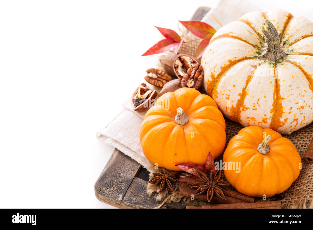 Variety of decorative pumpkins on white background - Stock Image