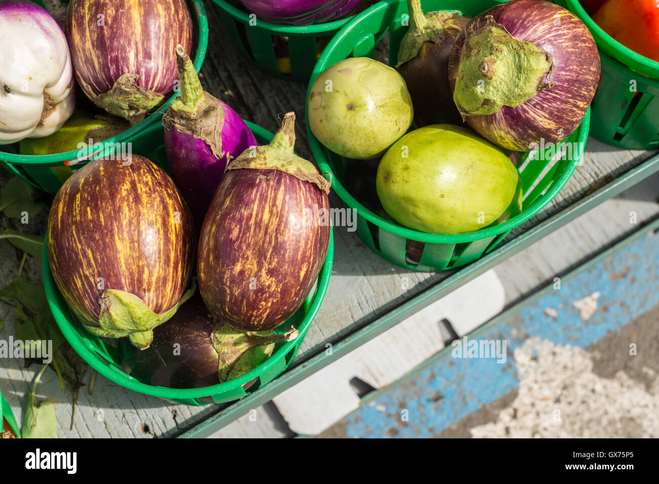 Udumalpet Eggplants at the local market - Stock Image