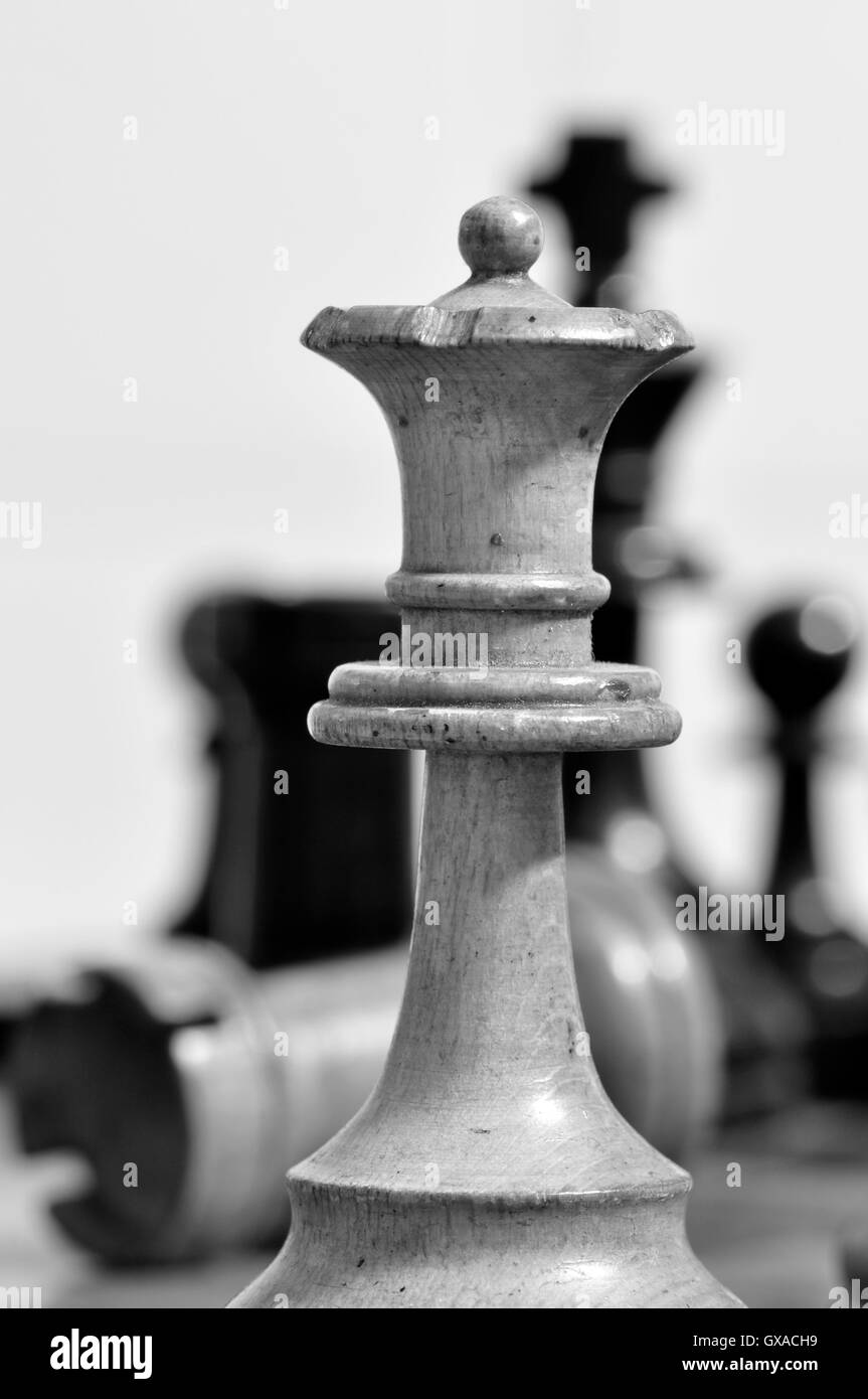 Chess pieces on the chessboard, queen in the foreground, pawn, rook, knight on the background in a white background - Stock Image