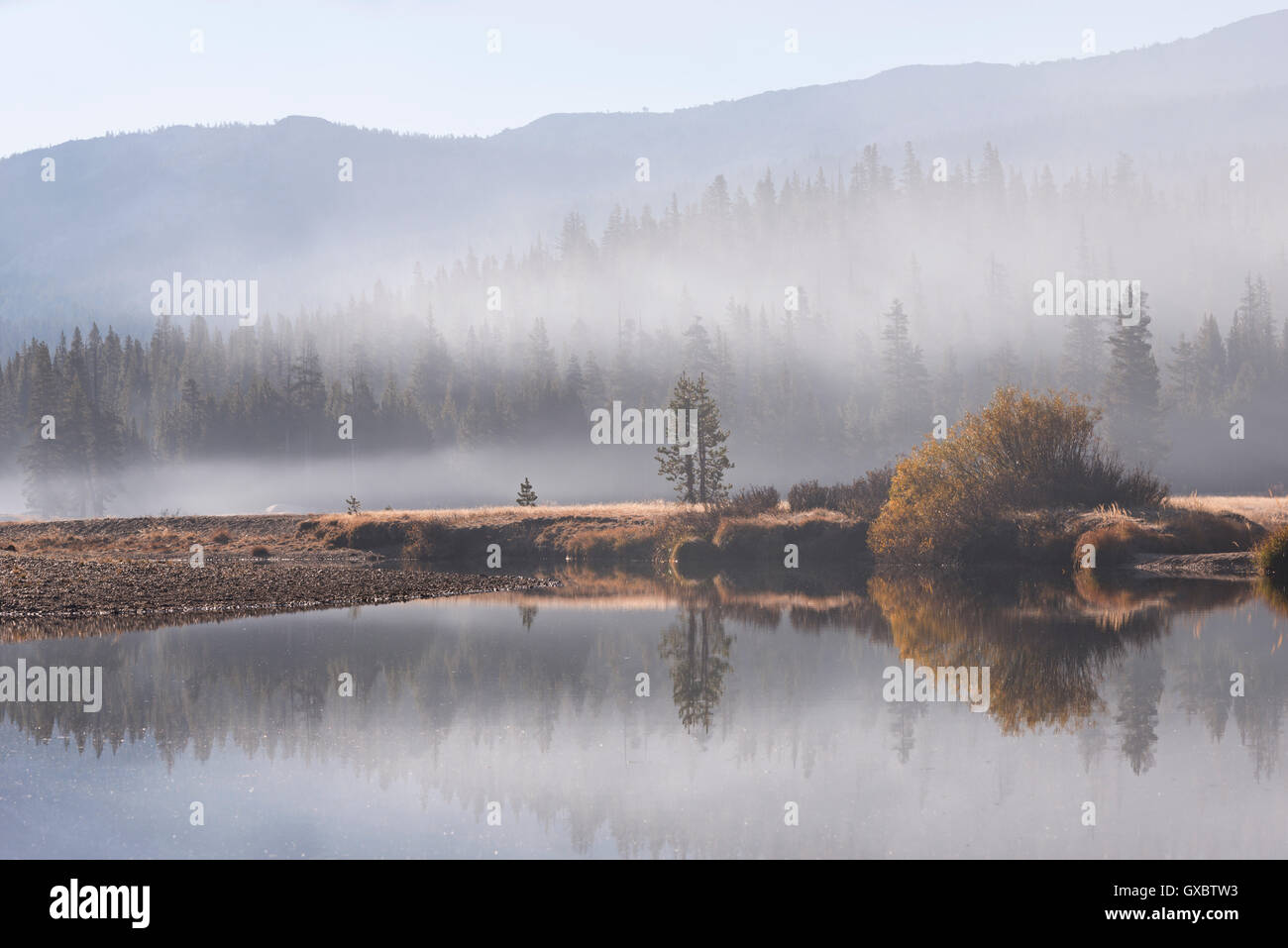 Early morning mist over Tuolumne Meadows, Yosemite National Park, California, USA. Autumn (October) 2014. - Stock Image