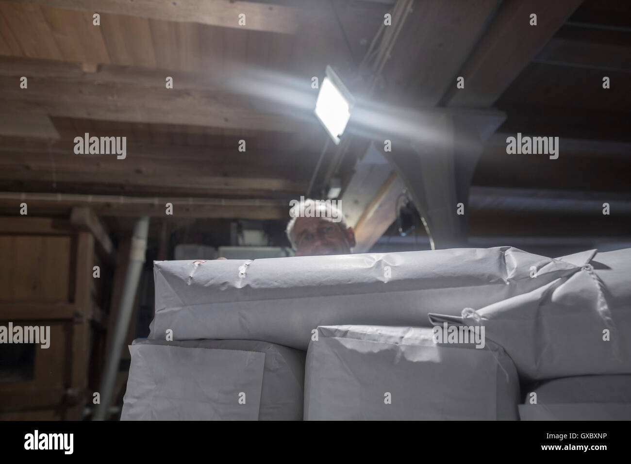 Male miller stacking sacks of milled flour in wheat mill - Stock Image