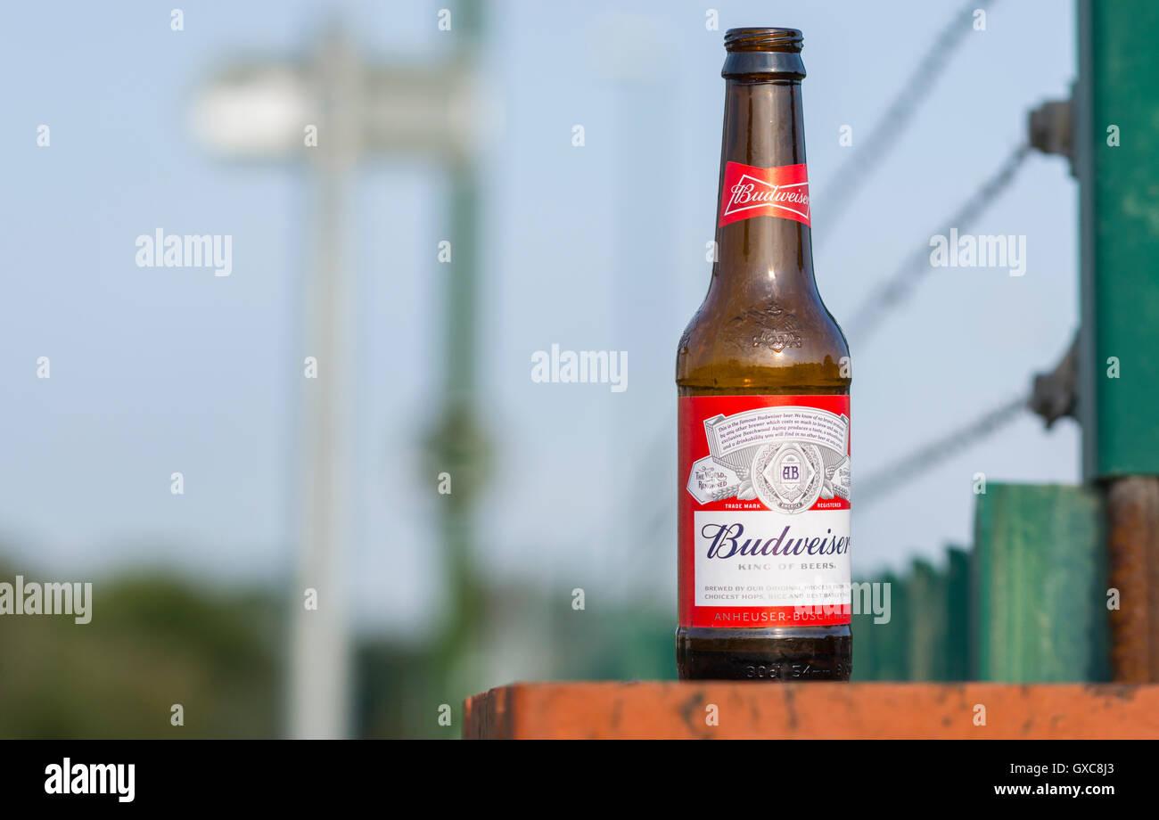 Half drunken bottle of Budweiser beer left on a wall. - Stock Image