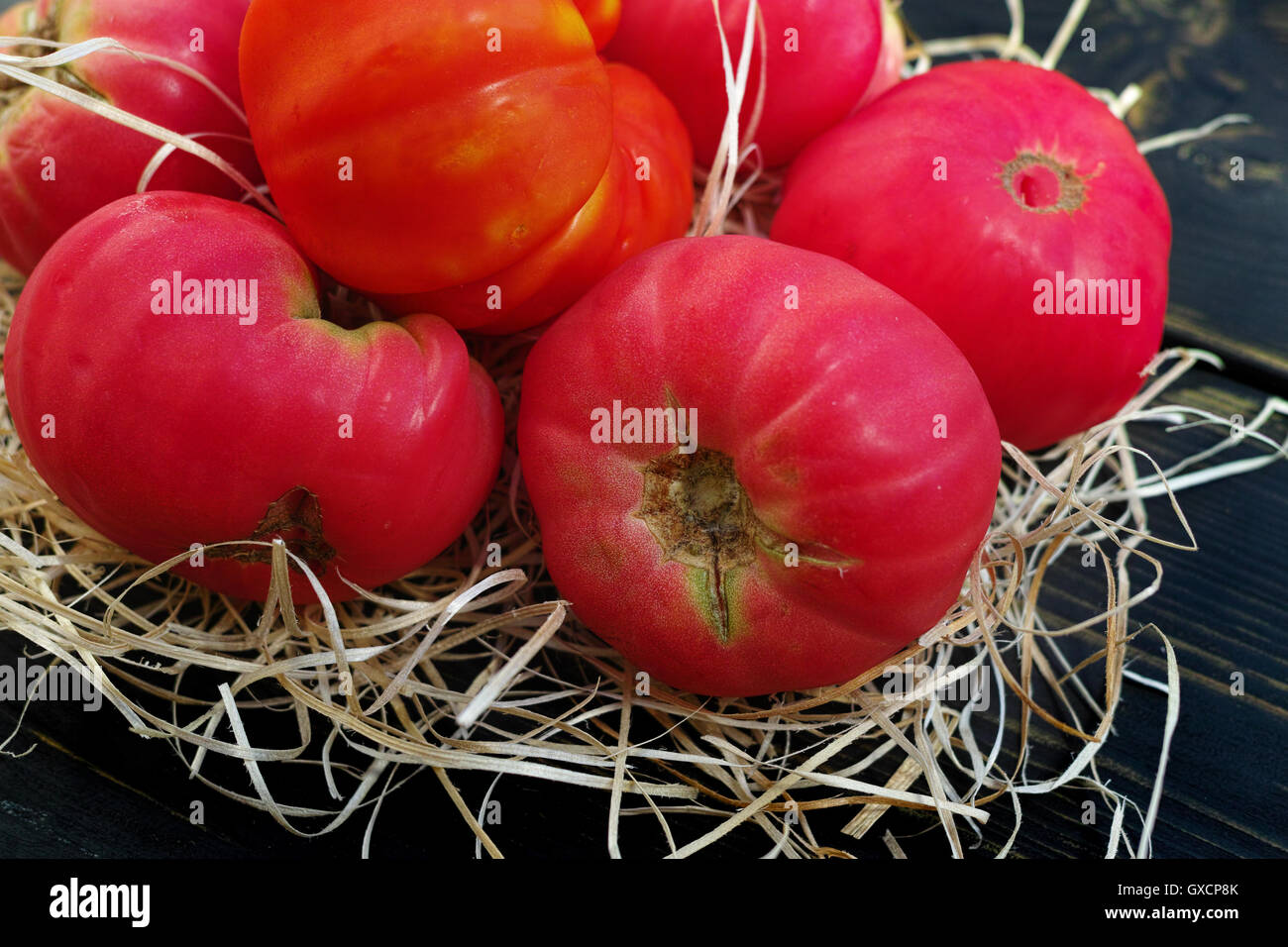 Big pink organic french tomatoes from own garden on black wooden background - Stock Image