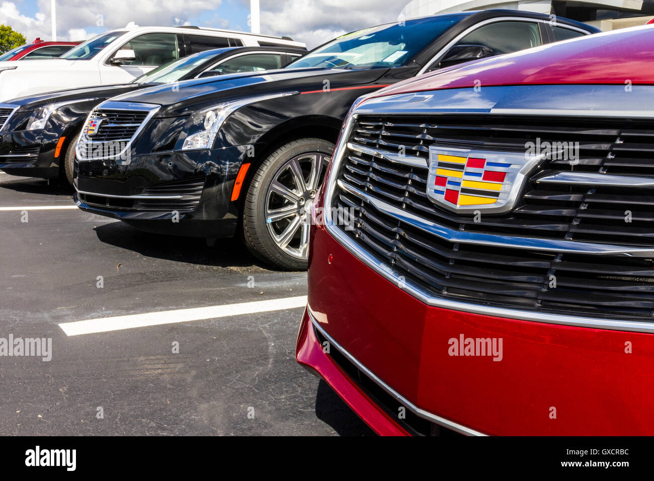 Indianapolis - Circa September 2016: Cadillac Automobile Dealership. Cadillac is the Luxury Division of General - Stock Image