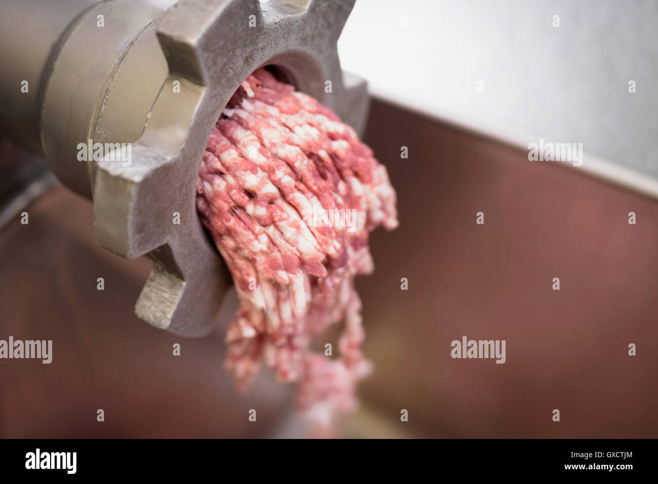 Minced sausage meat for Italian sausages in sausage factory, close up - Stock Image