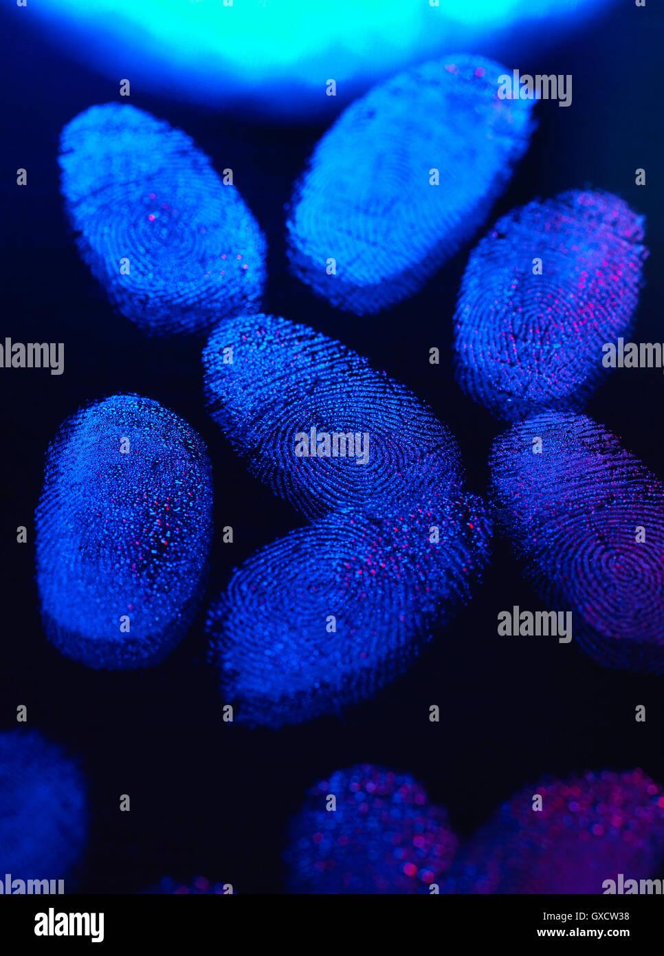 Identity, human finger prints shown up using light - Stock Image