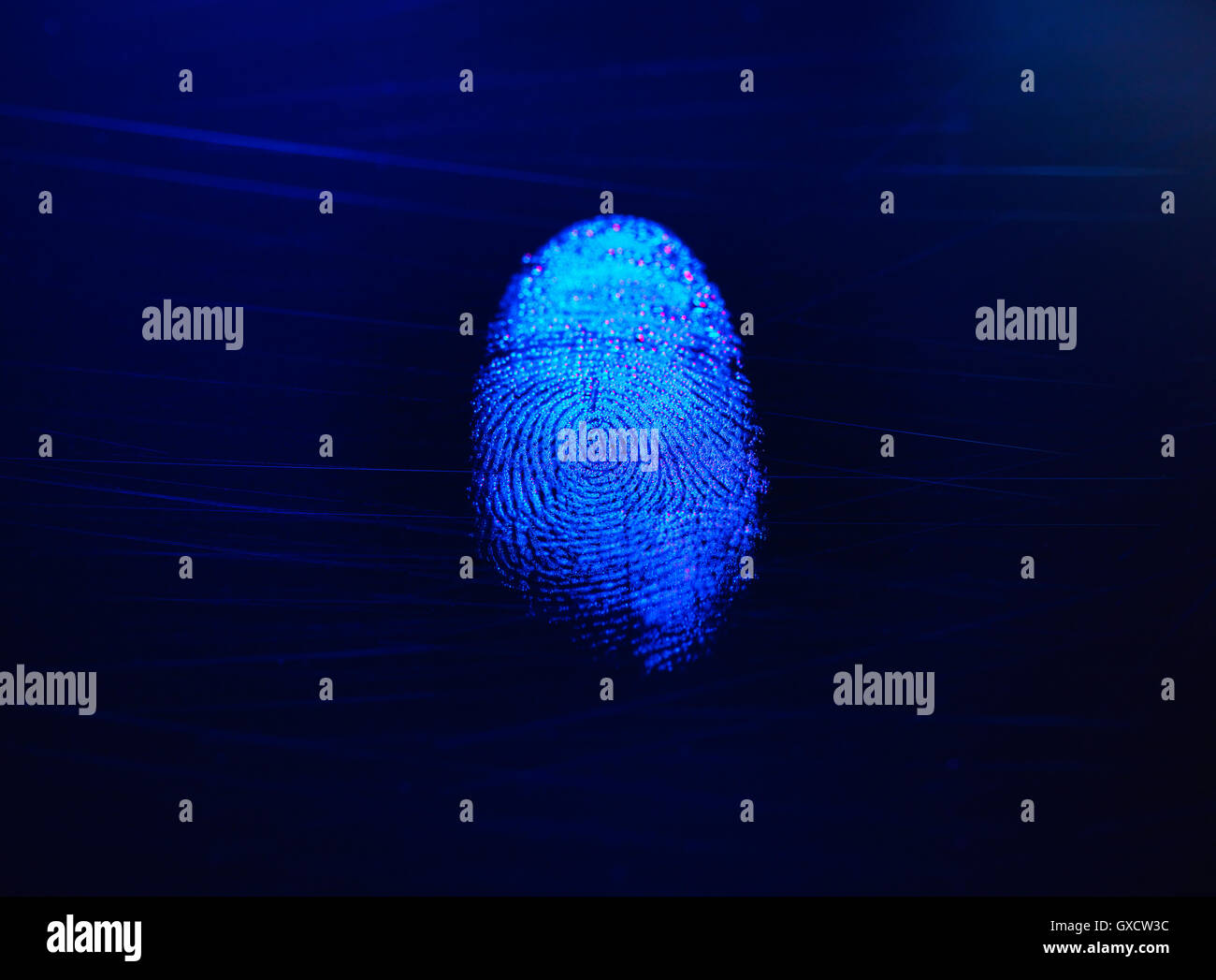 Human finger print as evidence of identity and as a password - Stock Image