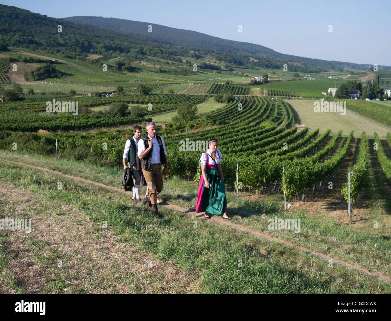 The Genussmeile harvest festival near Vienna, Austria Stock Photo