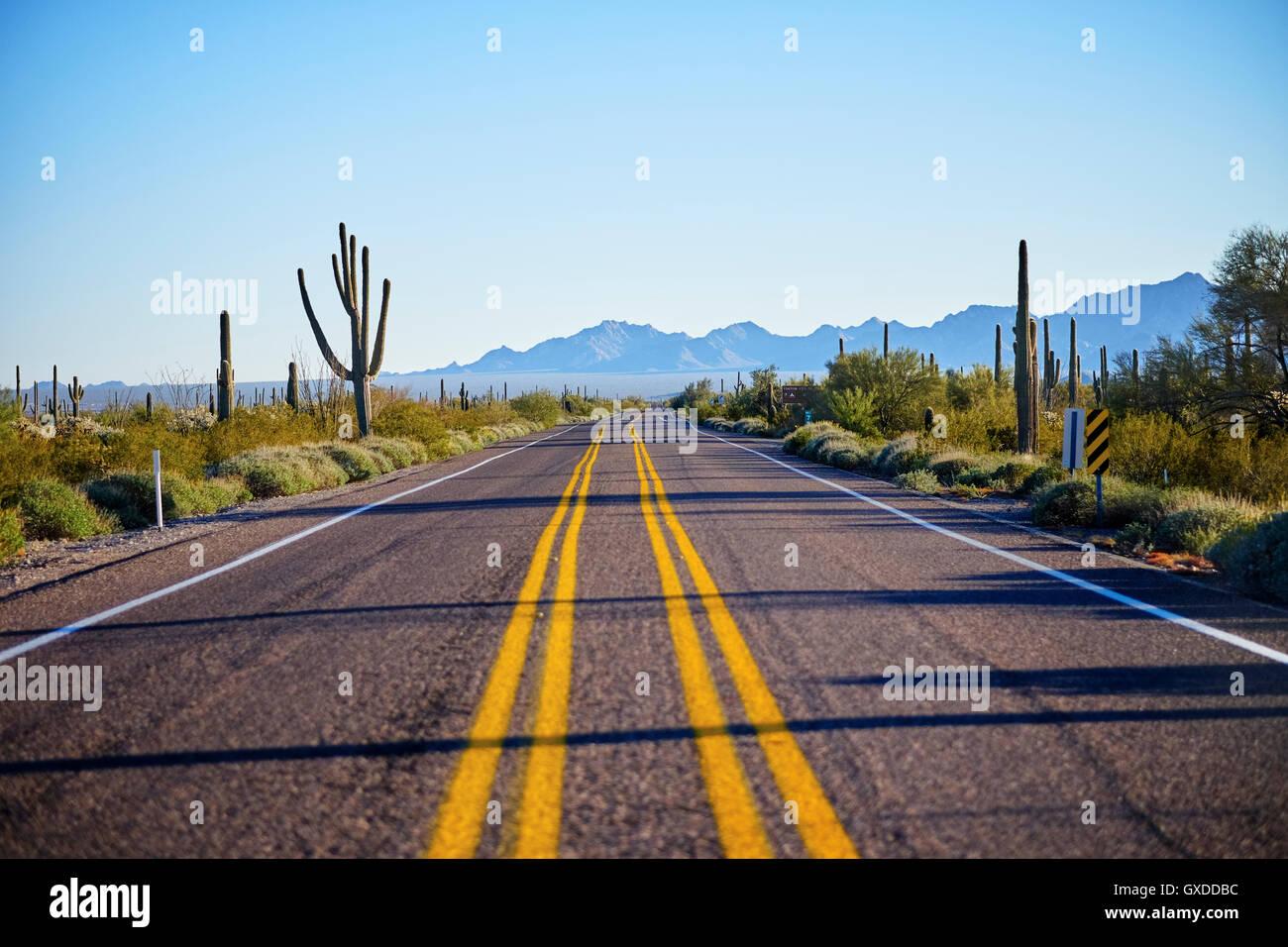 Desert highway, Organ Pipe Cactus National Monument, Arizona, USA - Stock Image