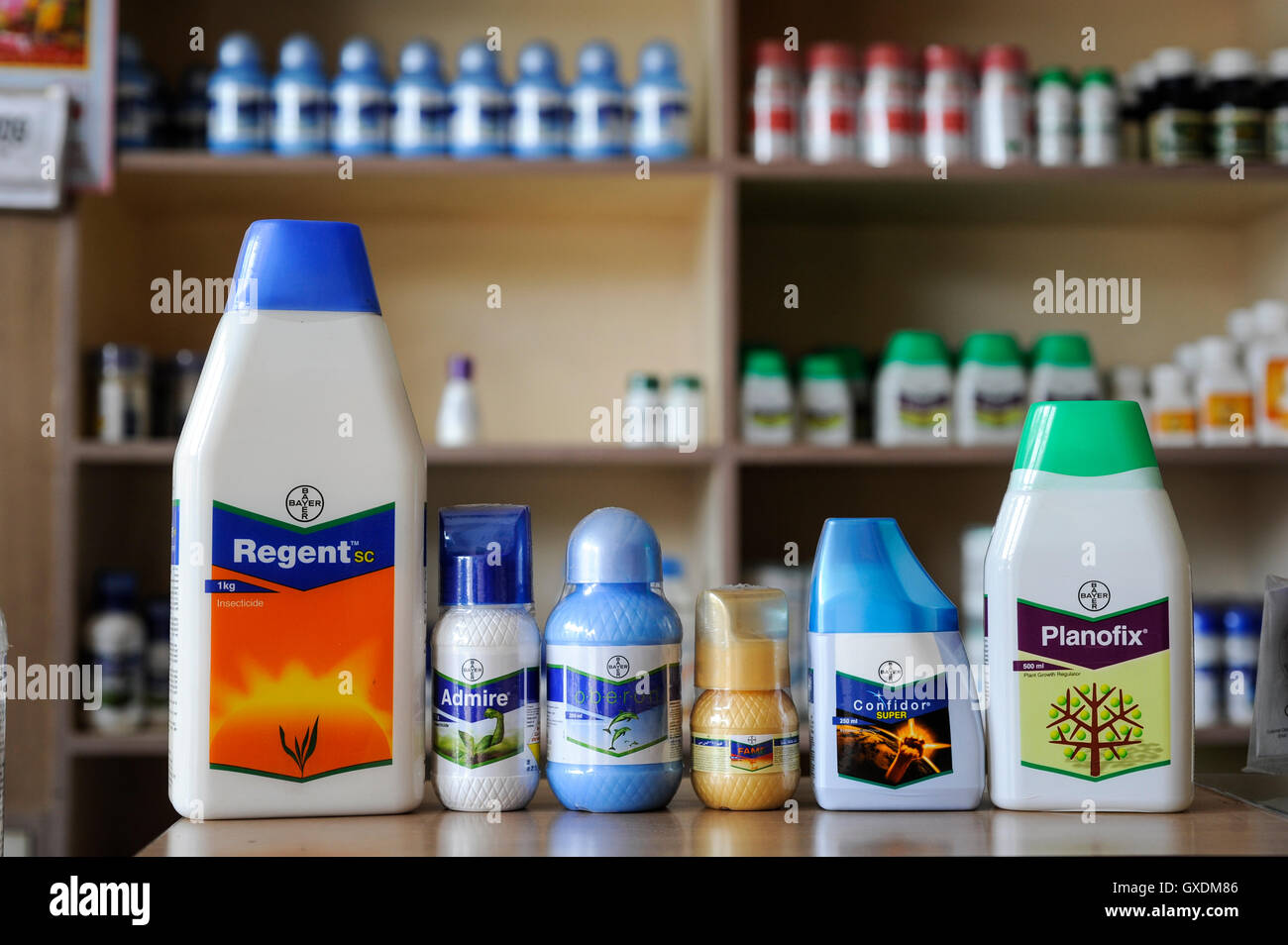 India Maharashtra, cotton farming in Vidarbha region , Bayer chemicals in shop with pesticides seeds and fertilizer - Stock Image