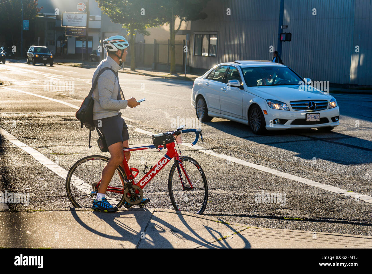 Cyclist checks cellphone as he waits at intersection - Stock Image