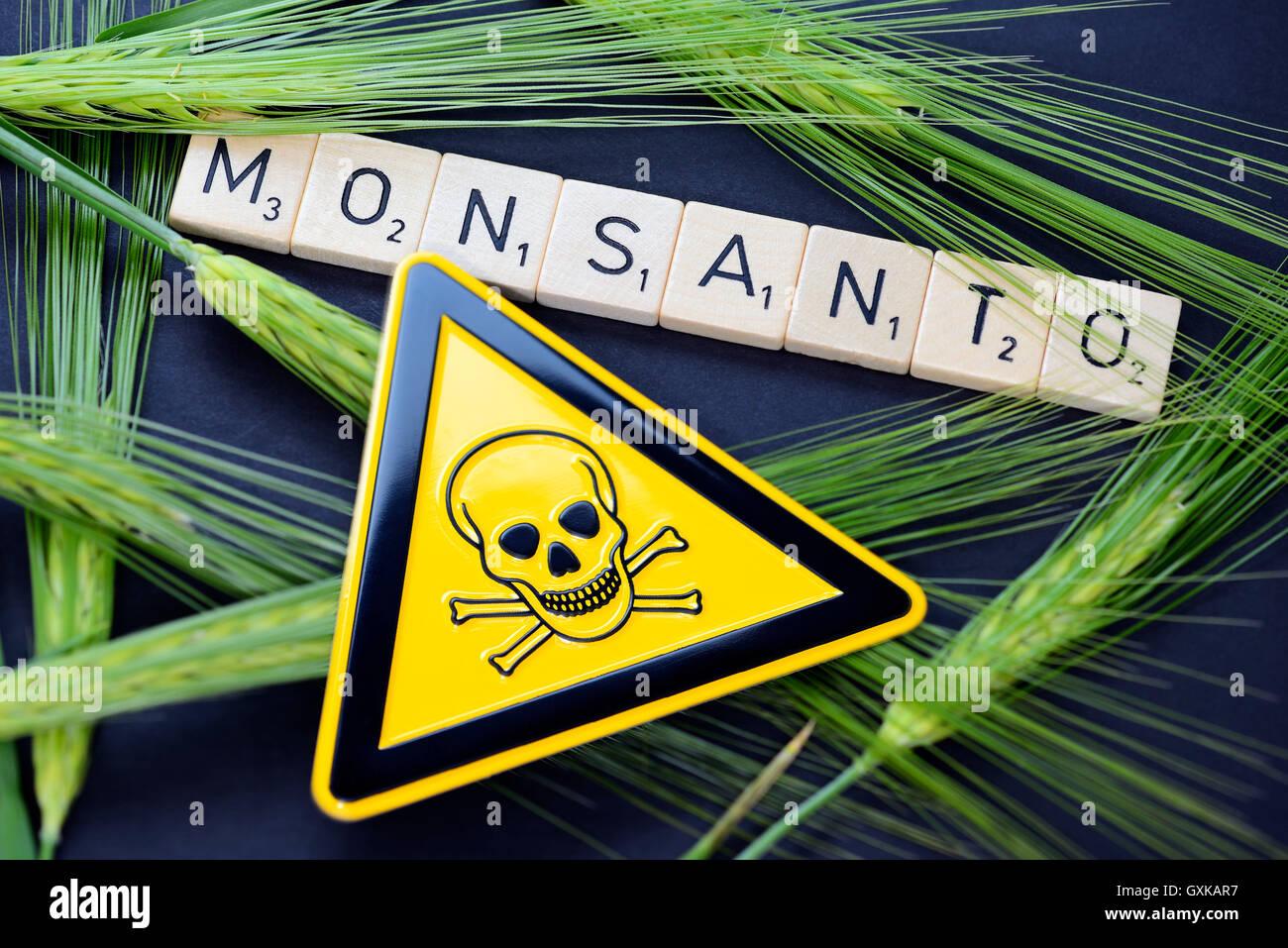 Monsanto-Schriftzug, Getreideähren und Gefährdungszeichen - Stock Image
