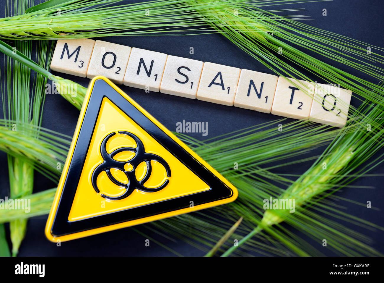 Monsanto-Schriftzug, Getreideähren und Biogefährdungszeichen Stock Photo