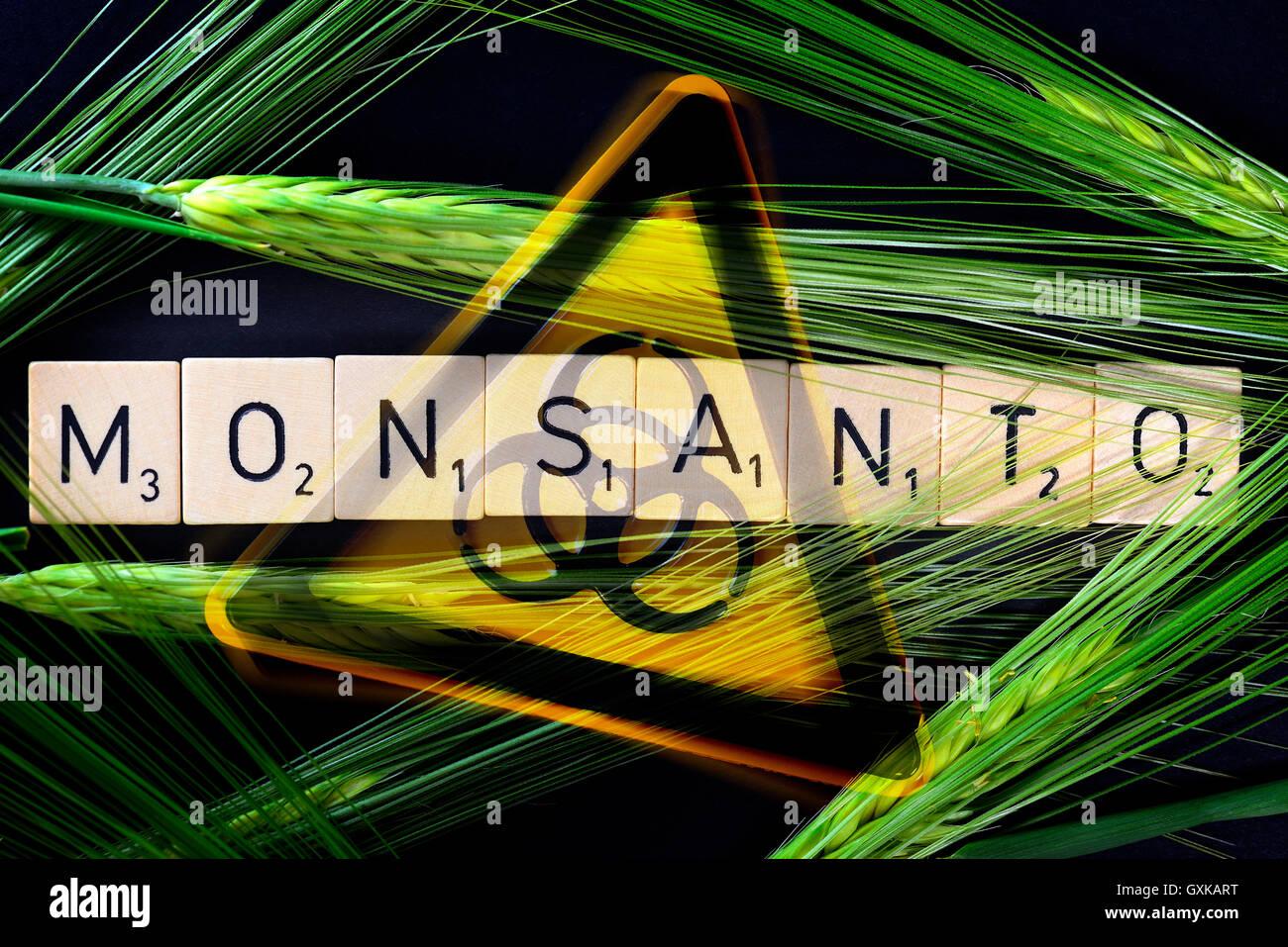 Monsanto-Schriftzug, Getreideähren und Biogefährdungszeichen - Stock Image