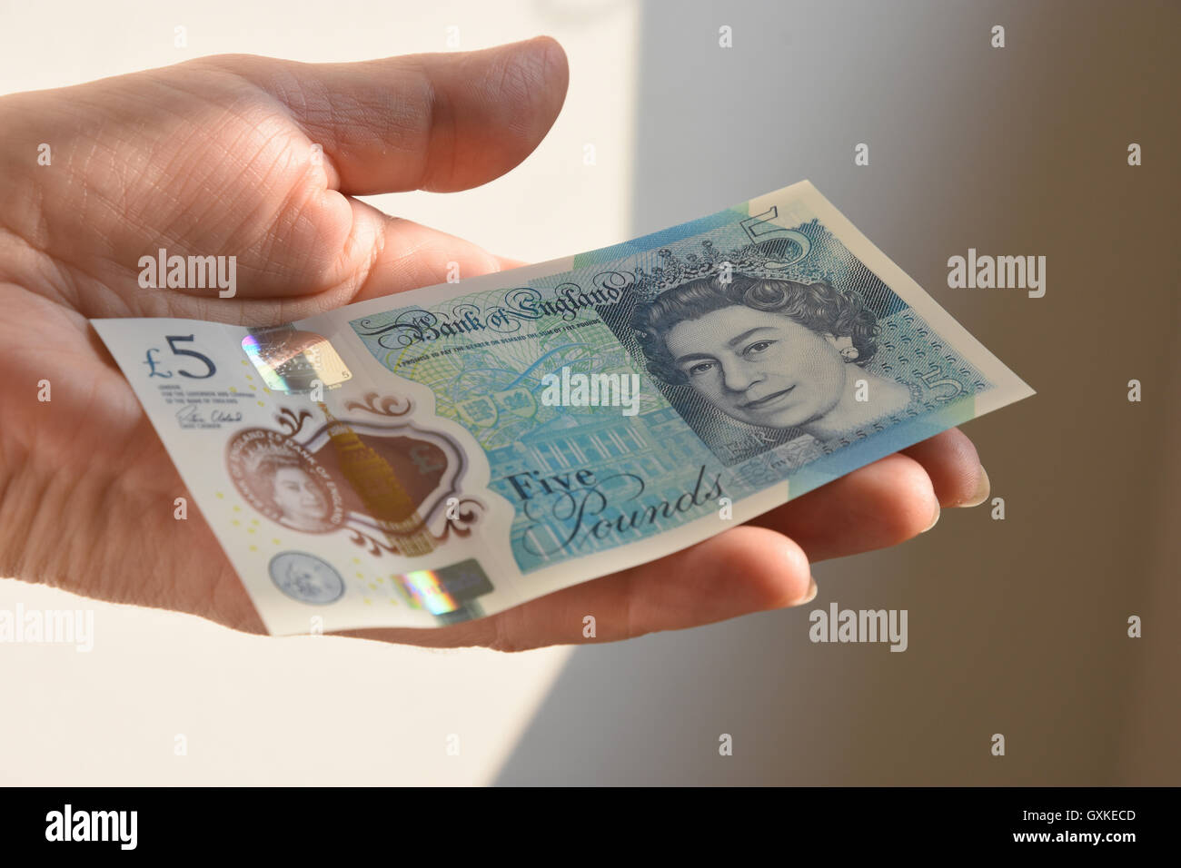 The New Polymer UK Five Pound Note - Stock Image